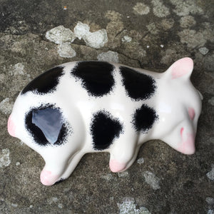 Black and White Sleeping Piglet