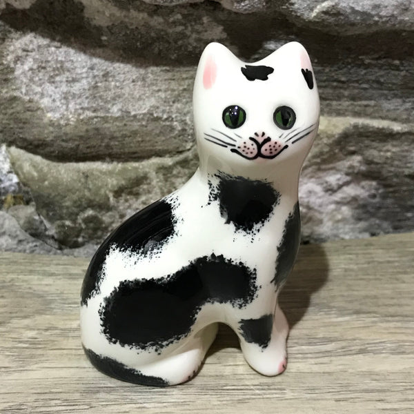 Black and White Tiny Cat