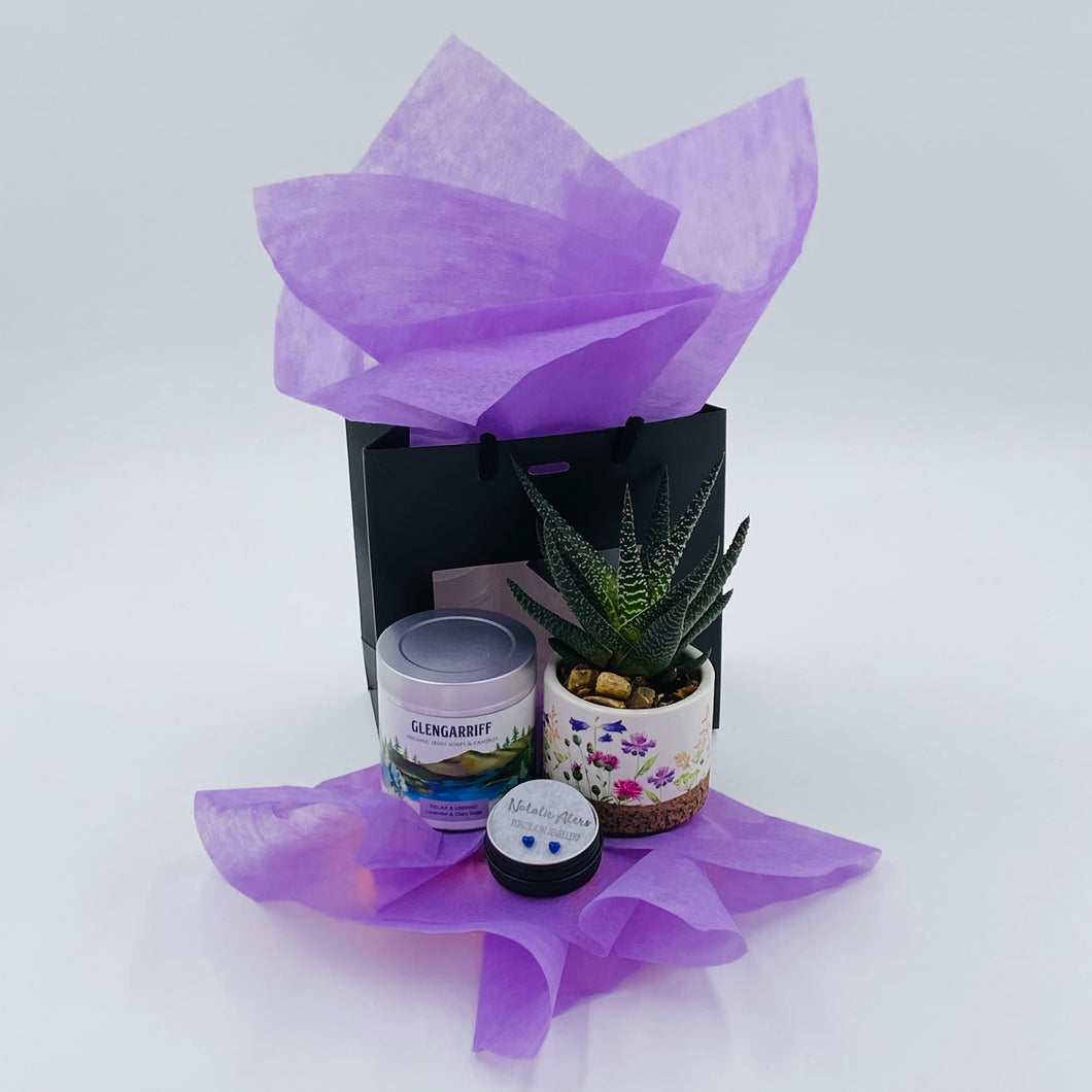 Something Pretty (Glengariff) - Gift Box - Strelitzia's Floristry & Irish Craft Shop