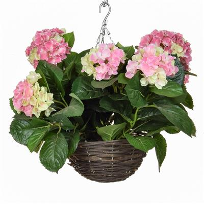 Hydrangea Hanging Baskets 30cm - Strelitzia's Floristry & Irish Craft Shop