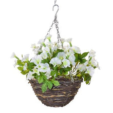 Load image into Gallery viewer, Petunia Hanging Baskets 35cm - Strelitzia's Floristry & Irish Craft Shop