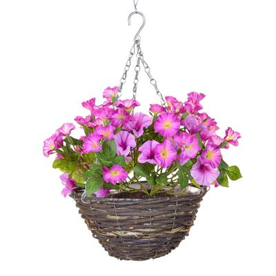 Petunia Hanging Baskets 35cm - Strelitzia's Floristry & Irish Craft Shop