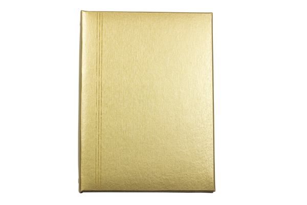 Brushed Gold Register Book