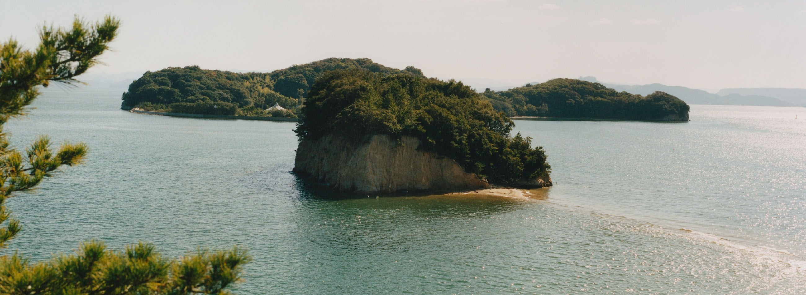 Tree covered rocky island in a lake