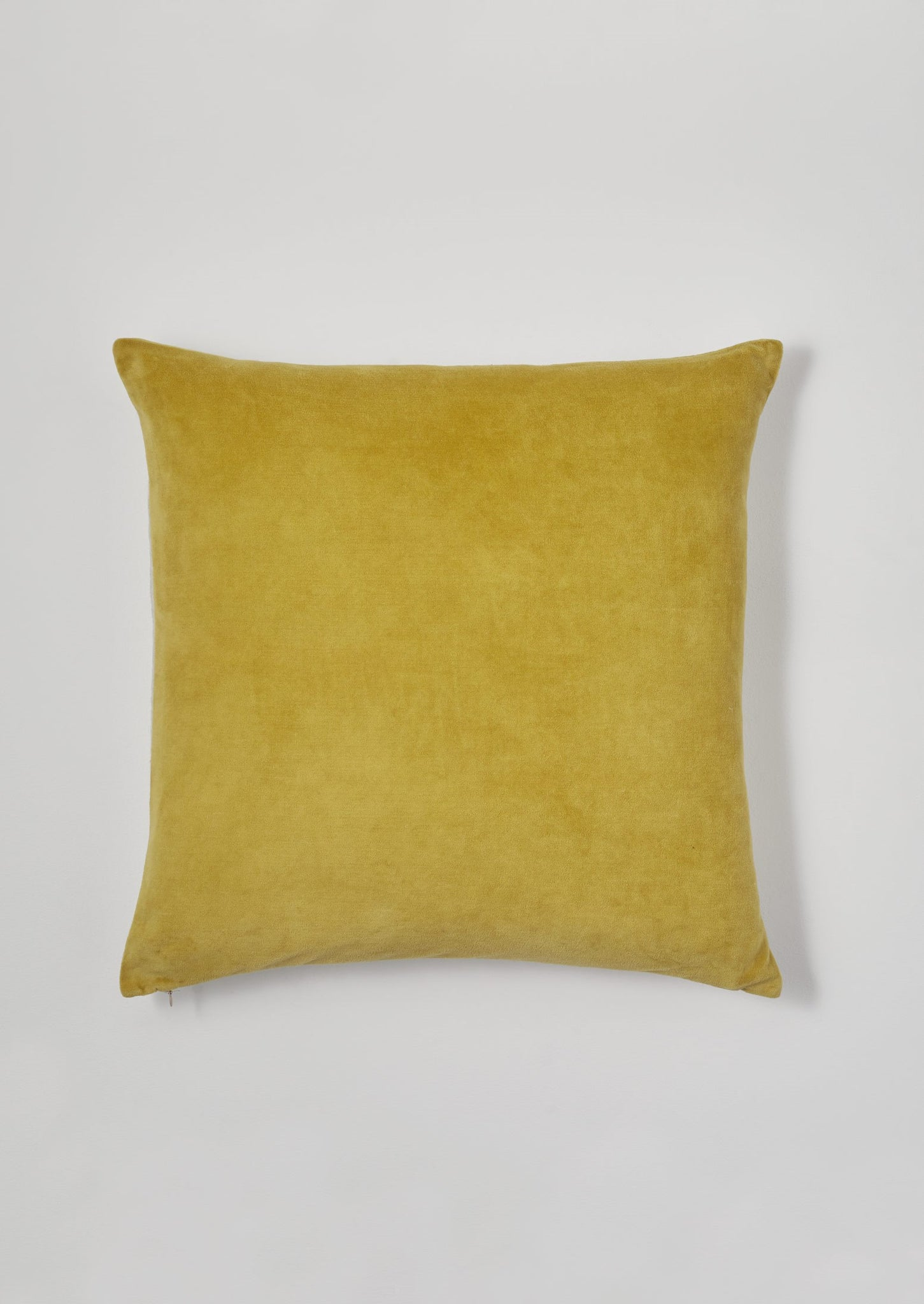 Velvet Cushion Cover | Pollen