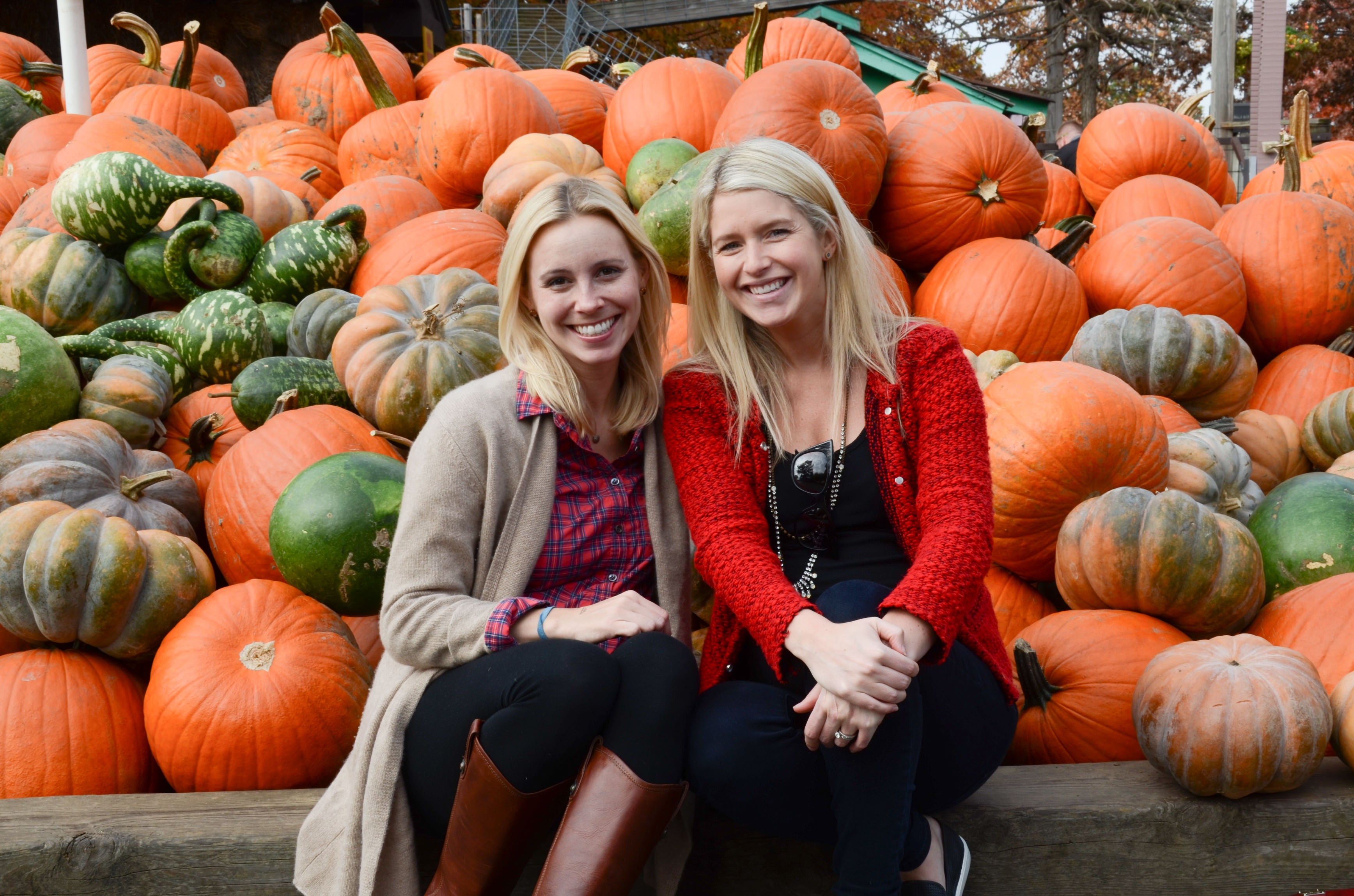 ashley murphy, molly graves, pumpkin patch, neat method, home organizers, neat, hot blondes, cute girls, neat cofounders, neat method, bengtson's pumpkin farm
