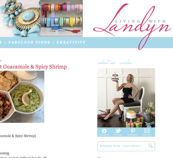 Lauren Warner, Lauren Murphy, Living with Landyn, Lifestyle blogger, popular blogs, professional organizer, NEAT Method,