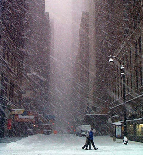 New York, Snow, Blizzard, Snow Day, Thundersnow, organizers, professional organizers, winter
