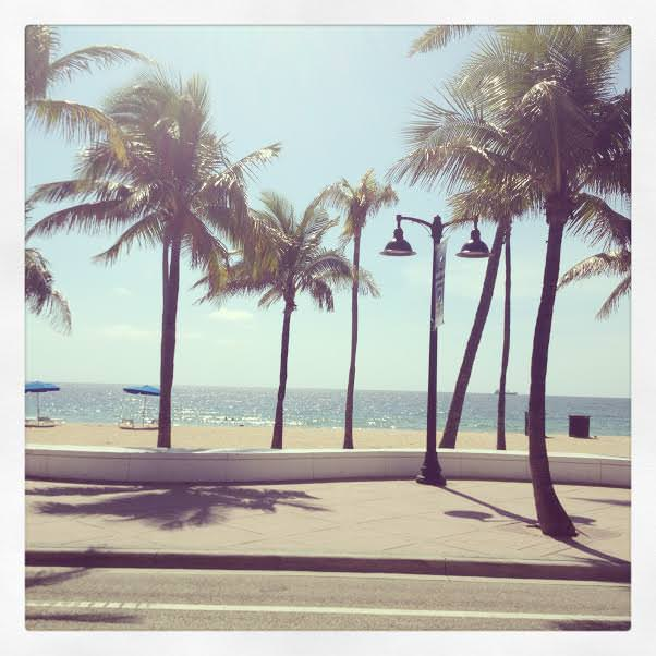 Marissa Hagmeyer, South Florida, beach, palm trees, south beach, miami, Ft Lauderdale,