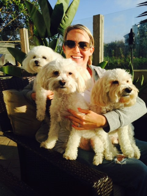 puppies, white puppies, san diego, blondes, beach babes, dogs, white dogs, poodles, lap dogs