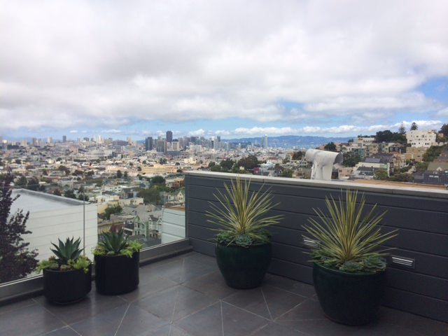 san francsico, city by the bay, sf, view of sf, sf city, san francisco city, sf bay, san francisco bay