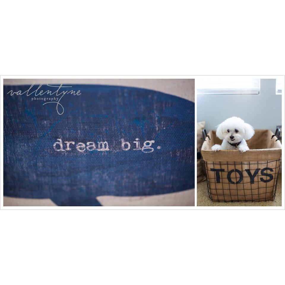 Vallentyne Photography,Katie Koentje, organize nursery, nautical nursery, boy nursery, cute boy nursery, nursery ideas, organized baby room, preparing for baby, nesting, nesting a nursery, nursery tips, puppy, toy bin, burlap toys bin, diy toy bin, diy burlap bin, diy burlap basket, diy, diy baskets