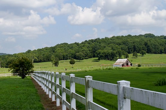 White Picket Fence, Pasture, Green grass, countryside