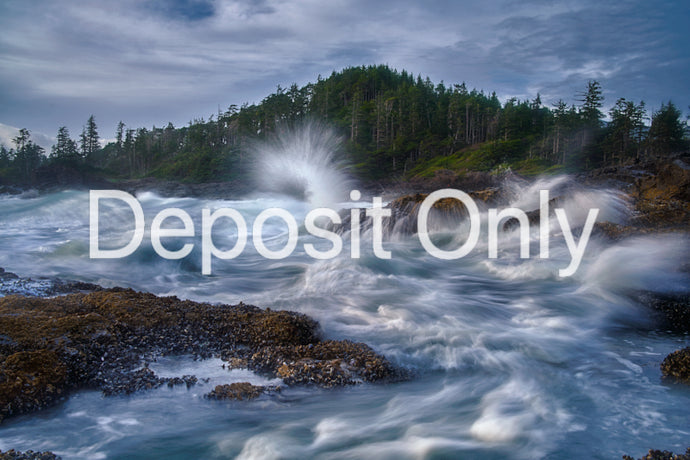 Deposit Only - Vancouver Island - VisionQuest Photography Workshop