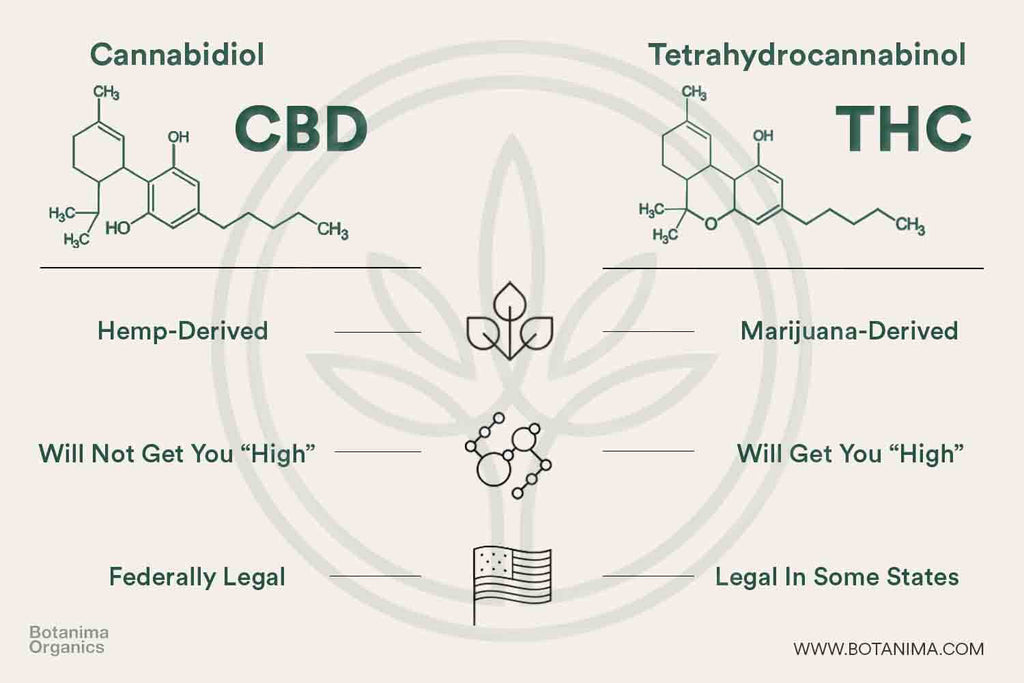 Difference-Between-CBD-and-THC-Infographic-Legal-Derived-High