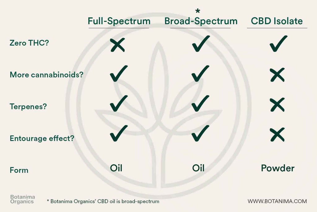 Differences-Between-Full-Broad-Spectrum-Isolate-CBD-Infographic