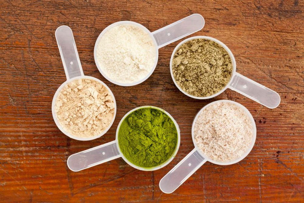 Choosing The Right Protein For You