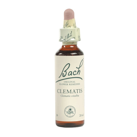 Image of Clematis - Bach Original Flower Remedies
