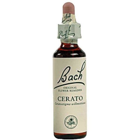 Image of Cerato - Bach Original Flower Remedies *AVAILABLE ON ORDER*
