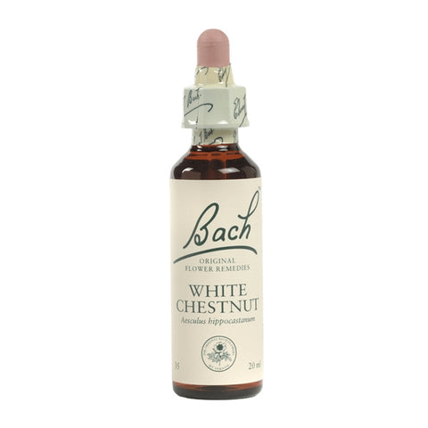 Image of White Chestnut - Bach Original Flower Remedies