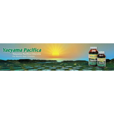 Chlorella (Yaeyama Pacifica) 1000 Tablets by Green Nutritionals (MicrOrganics)