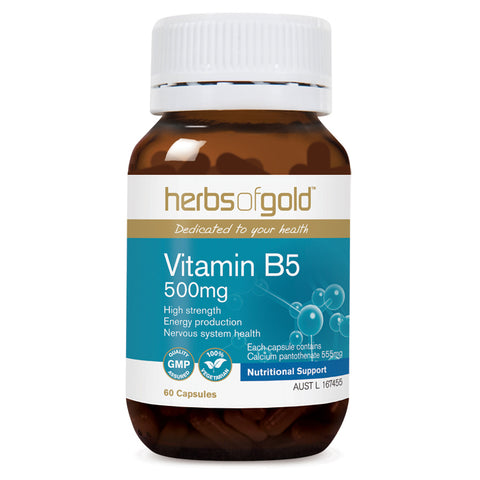 Image of Vitamin B5 500mg by Herbs of Gold