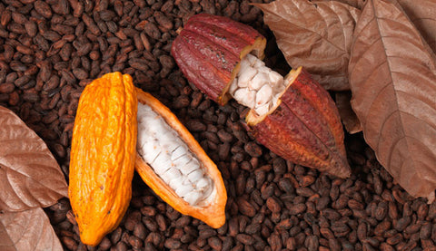Types of Cocoa