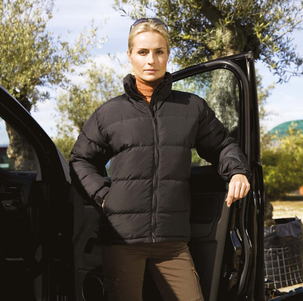 Holkam Ladies' Padded Jacket - Shirts4All NL