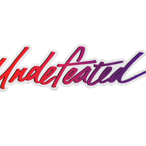 UNDEFEATED DUNK LOGO STICKER - MULTI