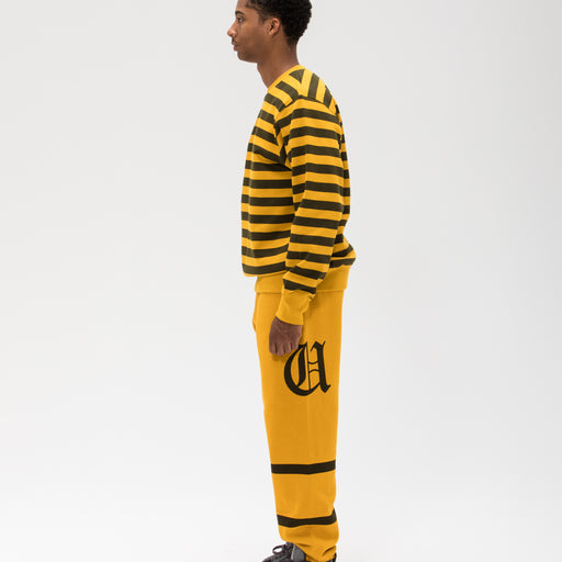 UNDEFEATED STRIPED CREWNECK Image 15