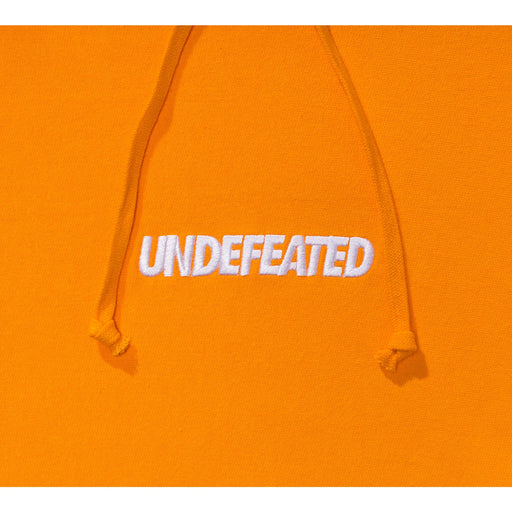 UNDEFEATED LOGO PULLOVER HOODIE Image 18