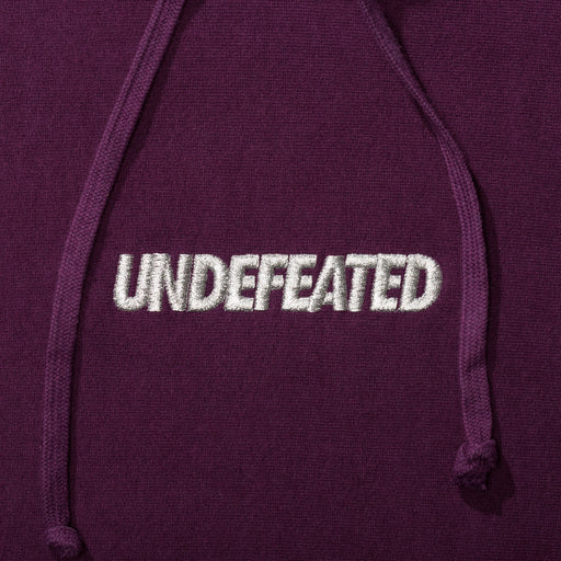 UNDEFEATED LUREX LOGO PULLOVER HOODIE Image 11