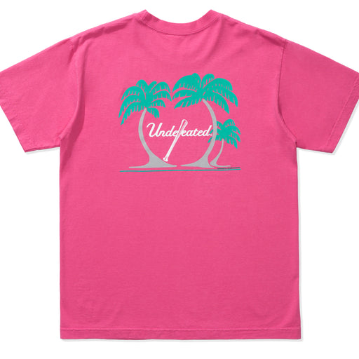 UNDEFEATED SPRING TRAINING TEE Image 2