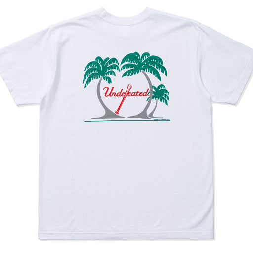 UNDEFEATED SPRING TRAINING TEE Image 11