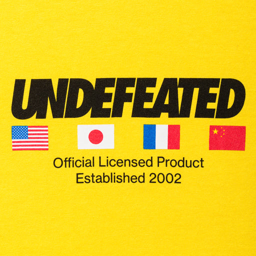 UNDEFEATED OFFICIAL FLAGS S/S TEE Image 9