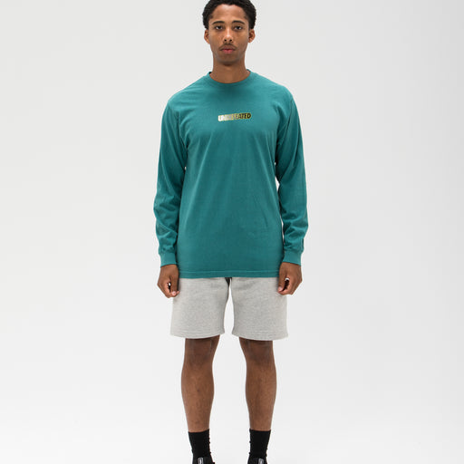 UNDEFEATED GRADIENT LOGO L/S TEE Image 21