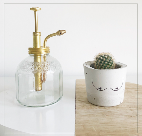 Cacticus-Boob-Planter-With-Water-Spritzer-Terra-Collective