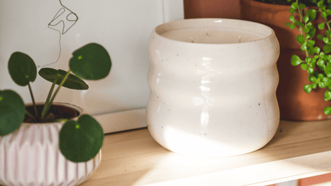 Sandi-Collection-Tripple-Wick-Natural-Soy-Candle-On-Wood-Shelf-Next-to-Plant-and-Modern-Frame