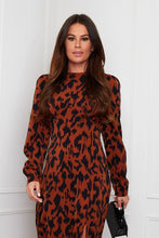 Load image into Gallery viewer, Cass Long sleeve animal dress