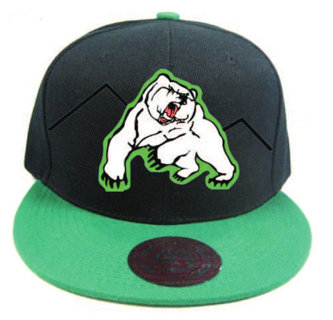 Quest Kermode Bear Snapback Hat