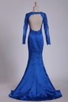 2019 Royal Blue Prom Dresses Long Sleeves Mermaid/Trumpet Satin With Applique