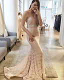 Gorgeous Lace Sexy Blush Pink Sweetheart Mermaid Charming Lace Prom Dresses