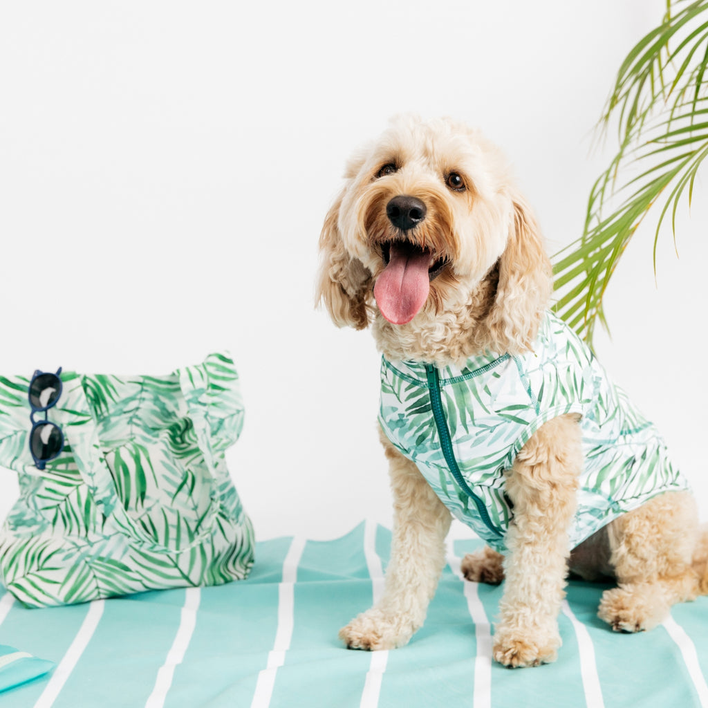 Botanical Dog Beachwear - Sandy Snoots