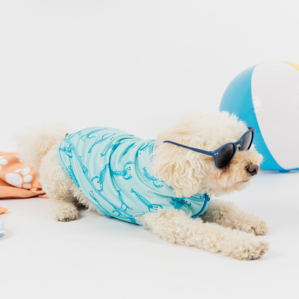 Lobster Dog Beachwear - Sandy Snoots
