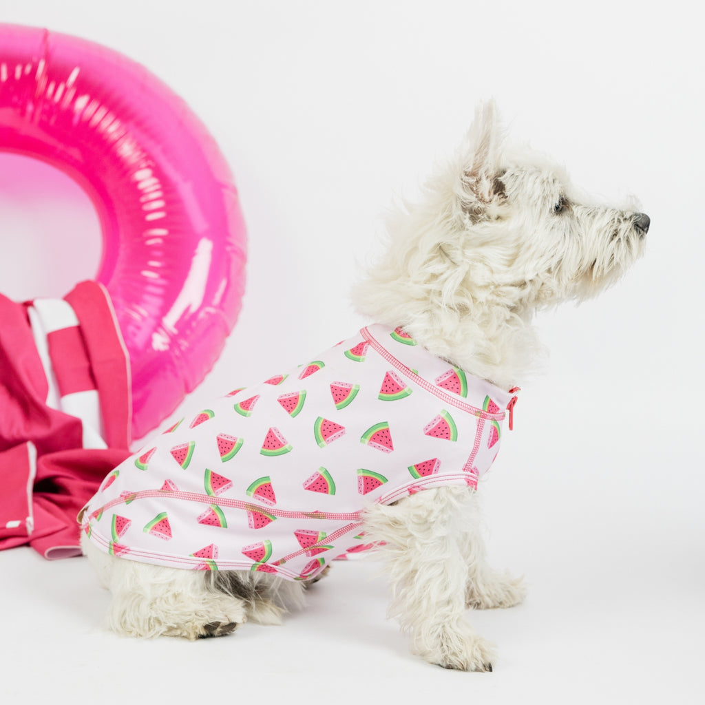 Watermelon Dog Beachwear - Sandy Snoots