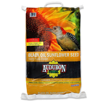 AUDUBON BLACK OIL SUNFLOWER 10 lbs