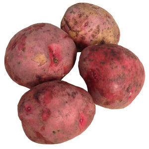 1LB RED SEED POTATOES