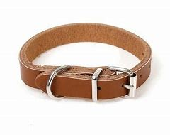 1'' x 27'' LEATHER COLLAR