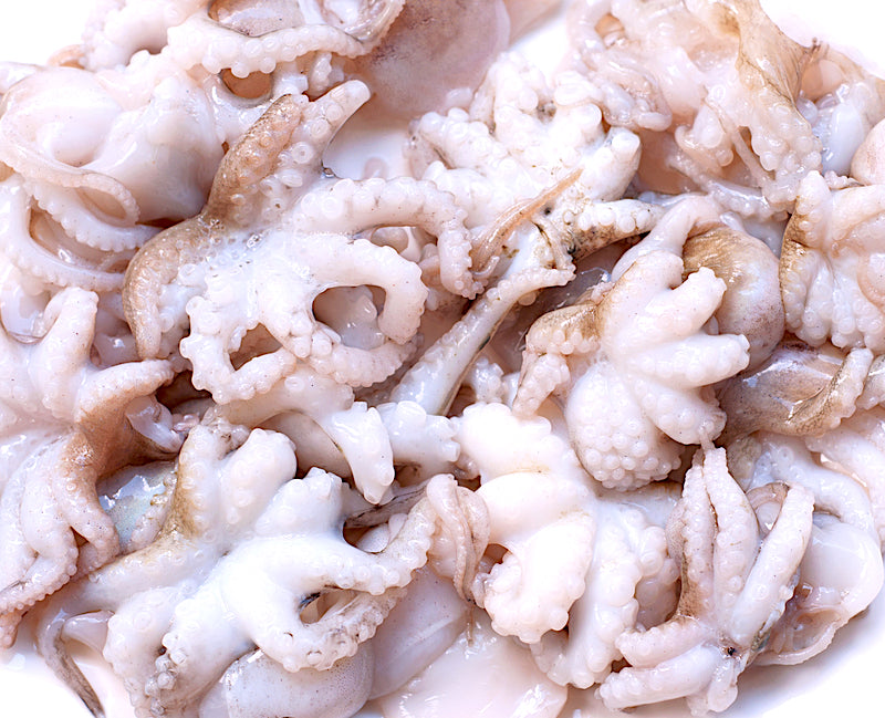 Baby Octopus - Raw Fresh Frozen - 500g