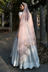 Ice Blue Embroidery Anarkali